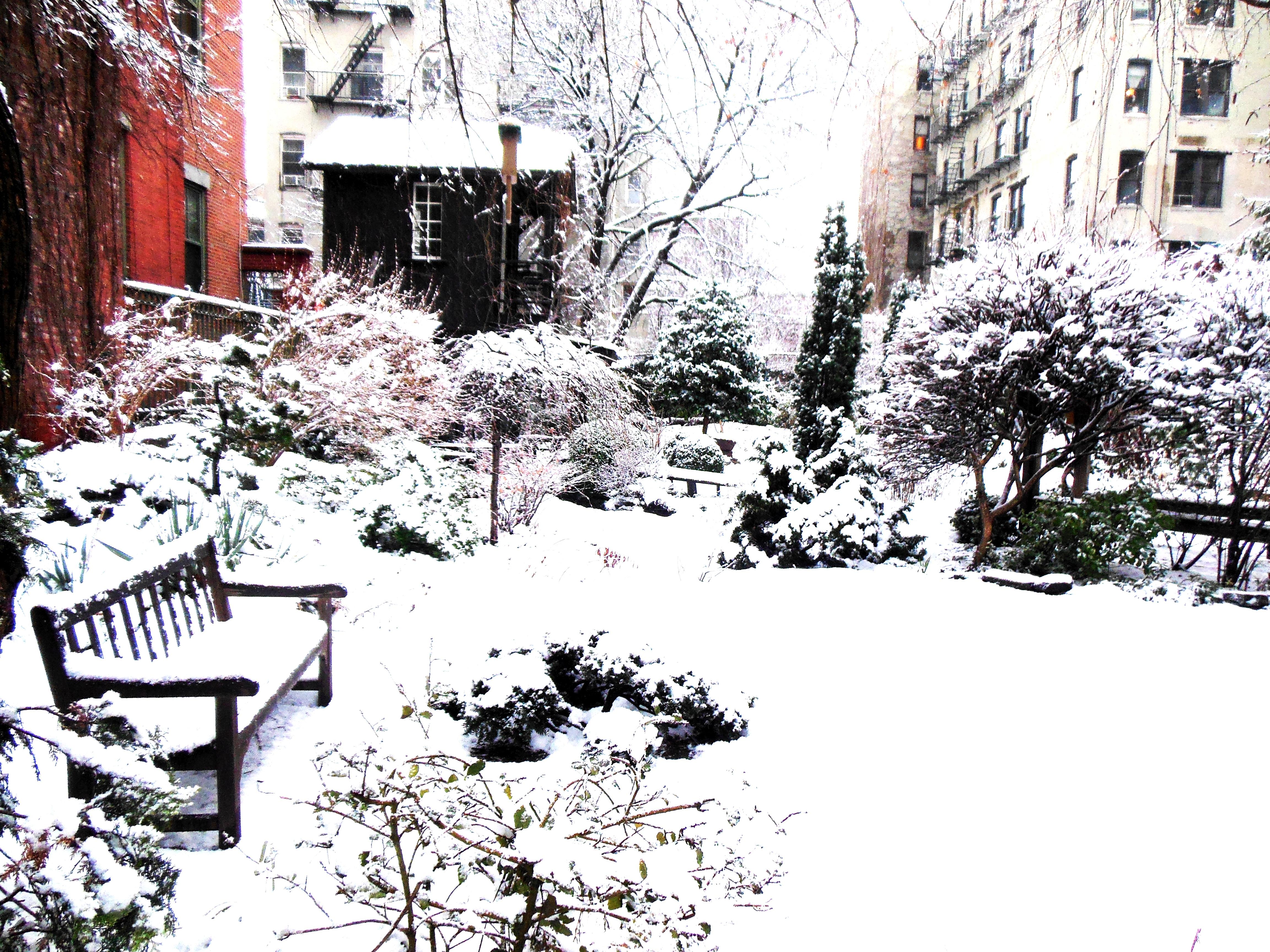 Community Gardens Of East Village Photo By Artur Dancs